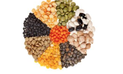 Legumes Feed the World