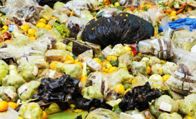 Food waste – How do we feed the world?