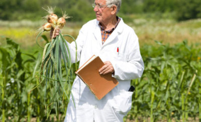 Agricultural Research For Global Food Security