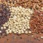 Ancient grains – food preferences – quinoa