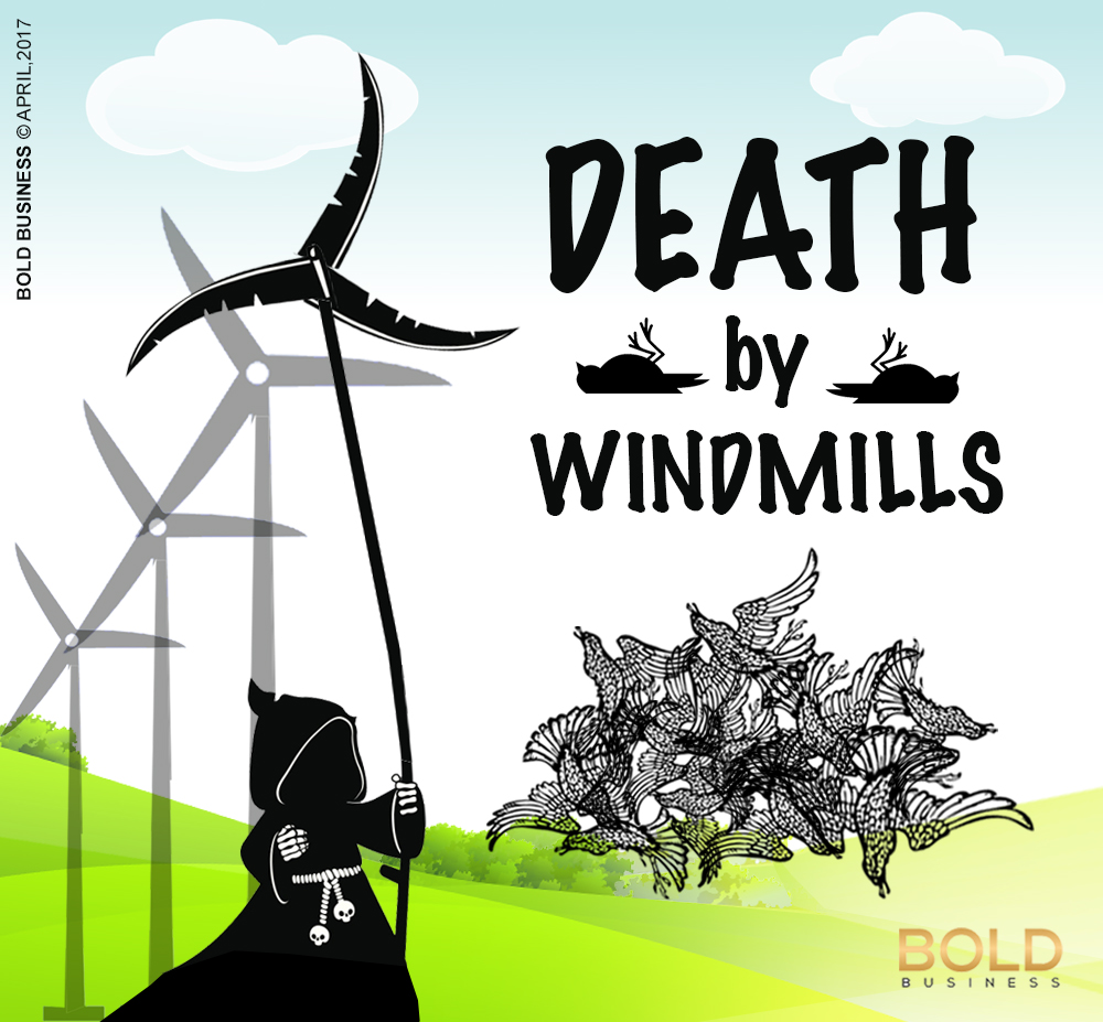 Big wind mills kill birds and bats