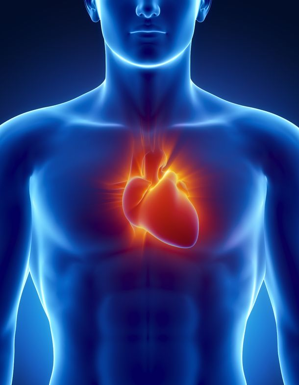 AI Better At Analyzing Heart Risk Factors