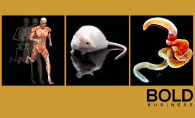 Regnerate medical mice and worms