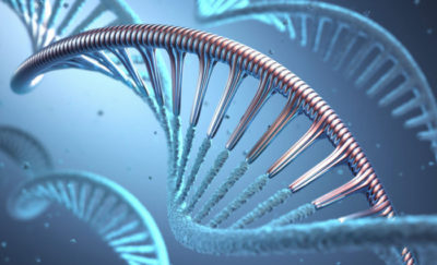 Synthetic Biology - genetic modification