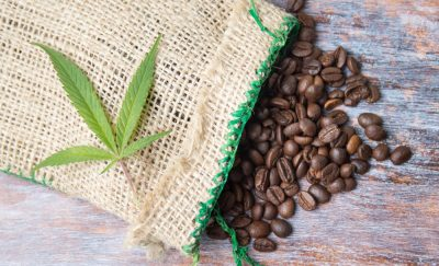 Coffee beans and marijuana leaf