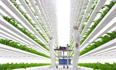 Driverless Farm Equipment & Vertical Planting - Farm Progress Show 2017