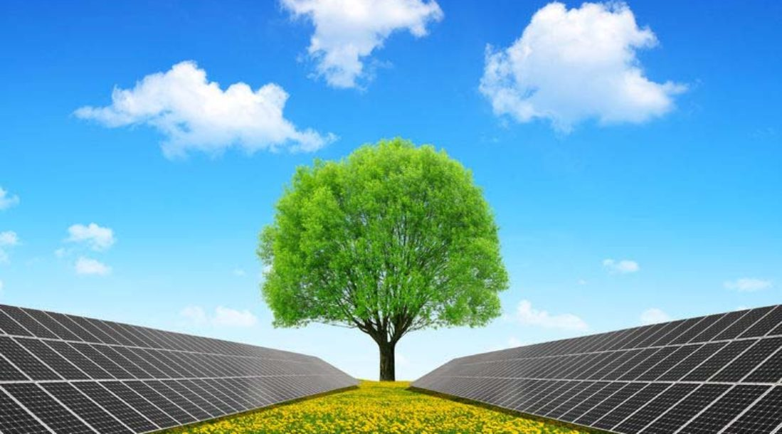 Tree, blue sky, and solar panels represent clean energy
