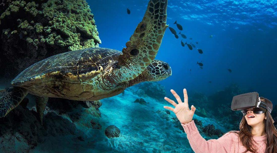 Virtual Reality Undersea
