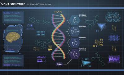 Custom gene selection for embryos