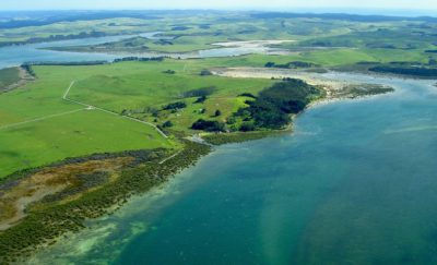 Aerial view of seaside farm in New Zealand.