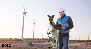 Kangaroo, Power Worker, Wind Turbines