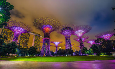 Solar-Powered Artificial Trees in Singapore