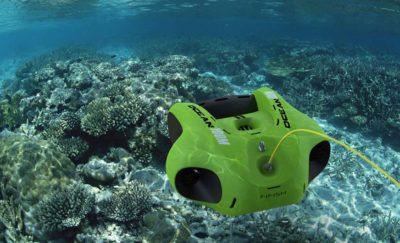 Fifish Atlantis