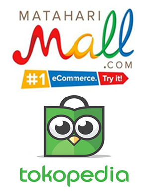 Two retail Indonesia Tech Firms.