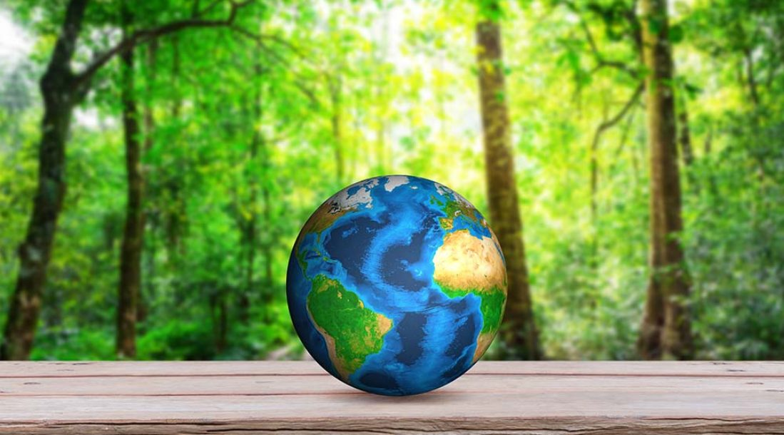 a photo of an Earth globe on a picnic table in a forest amid the rising trend of Big Oil investments in renewable energy