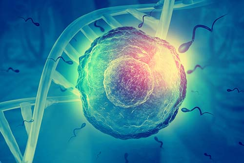 Genomic Prediction to rule out diseases and more