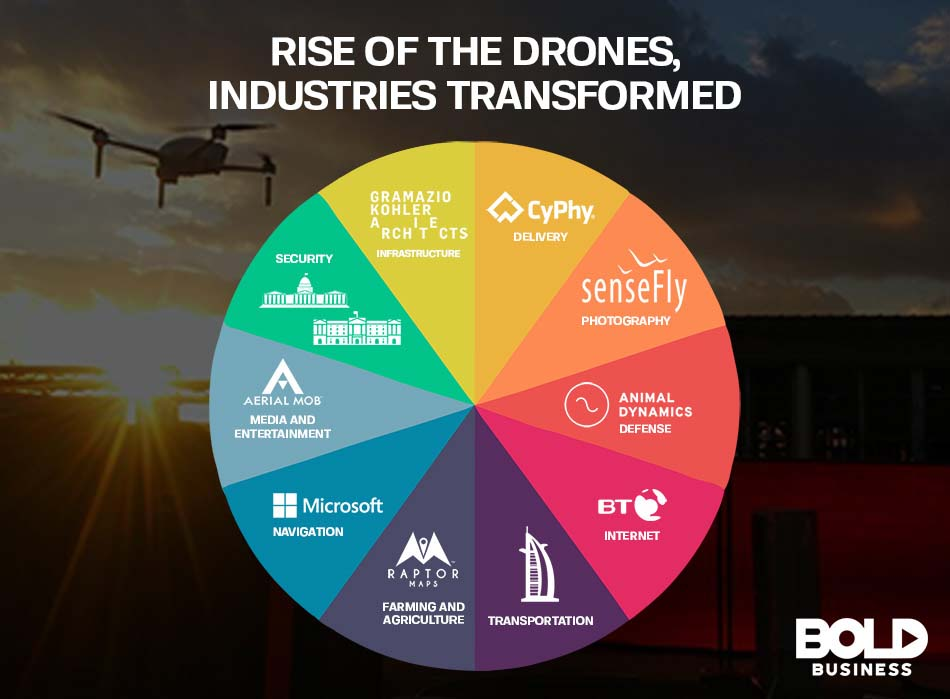 A graph showing drone companies by sector.