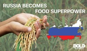 grain exports from russian agriculture and called as a food superpower