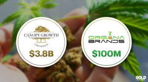 Companies That Produce Medical Marijuana Collaborate in Canada