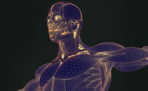 3d body scanning used in developing custom fitness plan