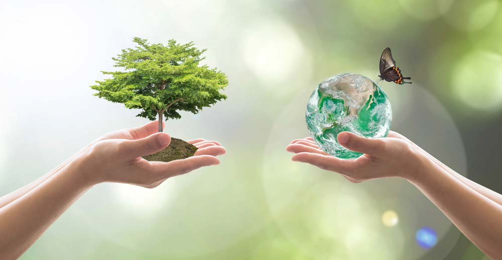 two hands, one holding a tree, the other a crystal globe and butterfly