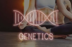 genetics being used in developing custom fitness plan