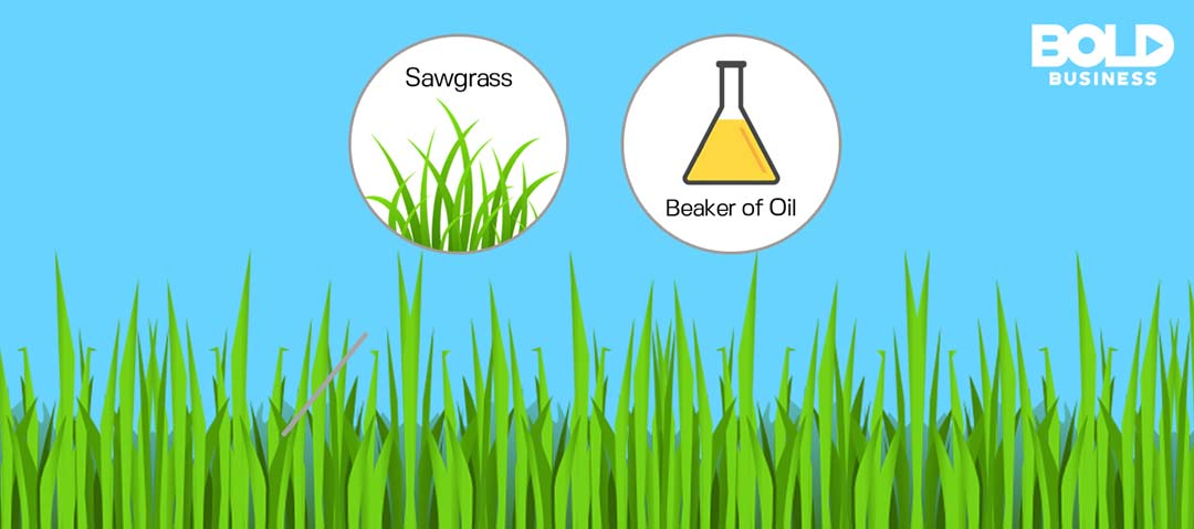 Sawgrass and beaker of oil above a clip art lawn