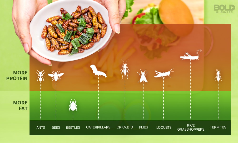 entomophagy is already done by over 2 Billion people daily