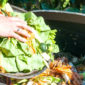 Decreasing Food Wastes with New Technology