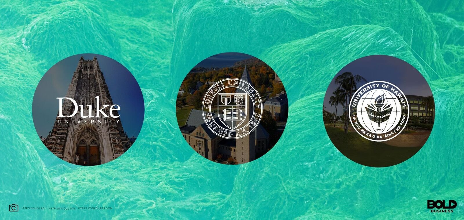 The logos of three universities studying the use of algae to stem climate change and provide food and fuel