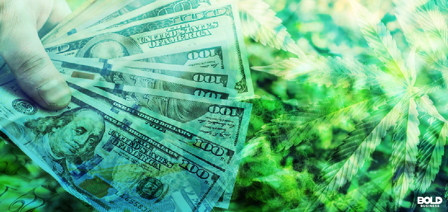 VC Catapults Growth of Cannabis Start-ups