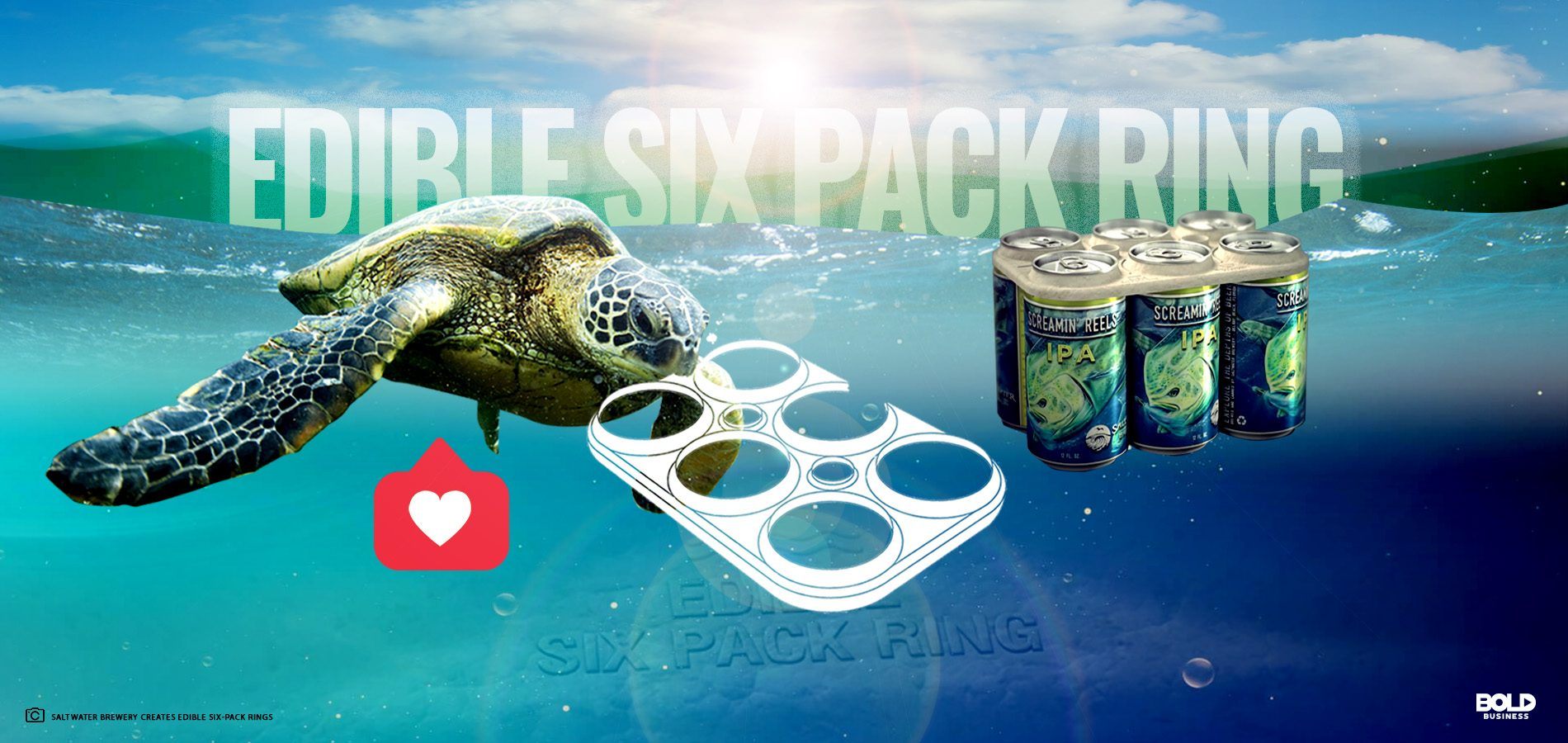 biodegradable beer can holder with a turtle biting it