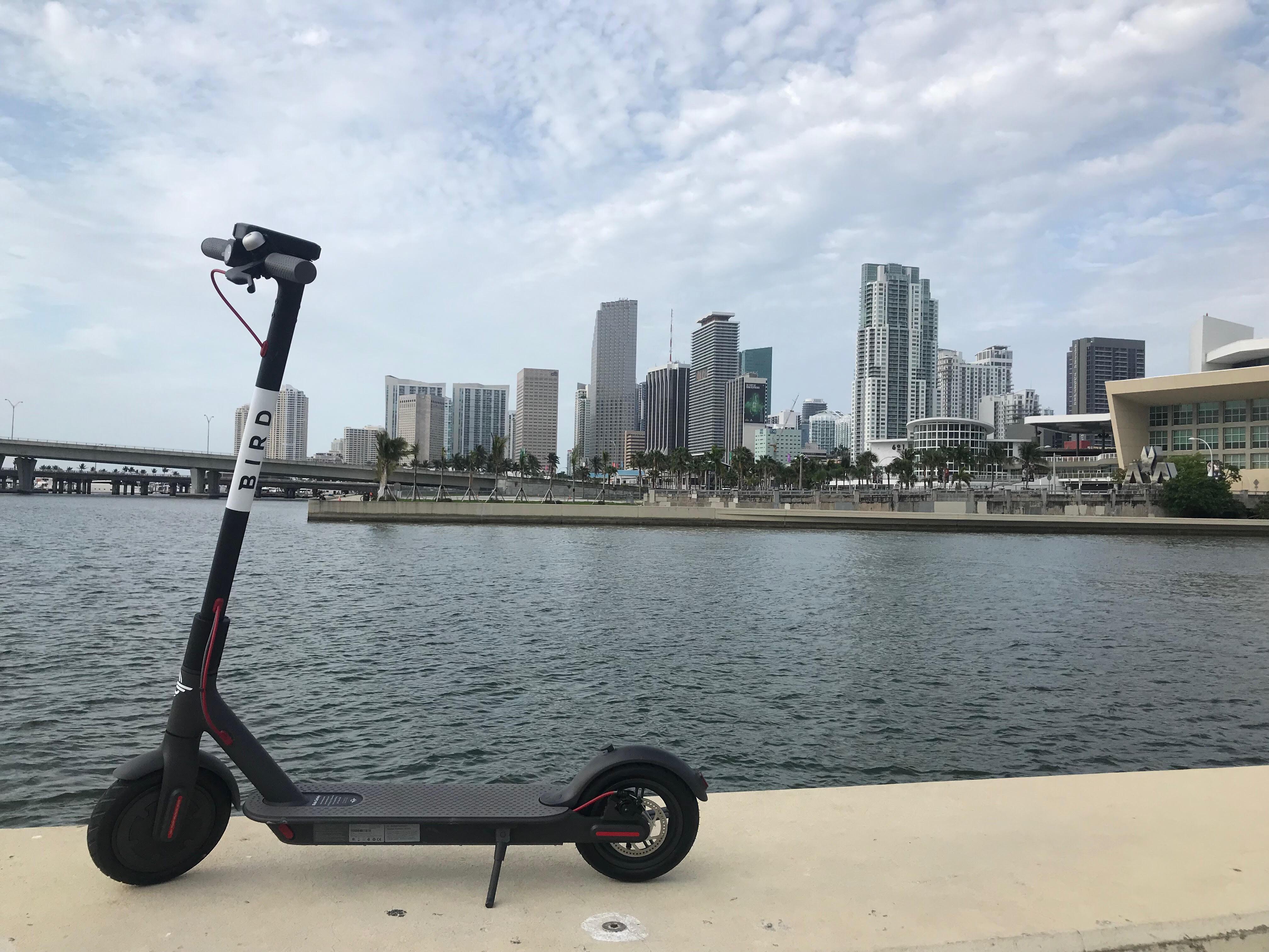 Bird opens in Miami
