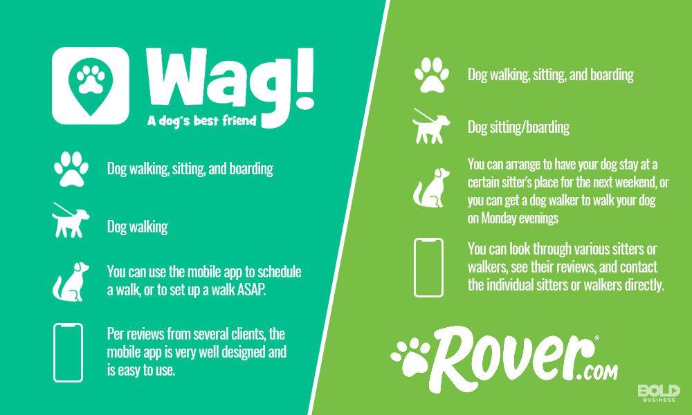 Dog Walking Services and dog sitting app