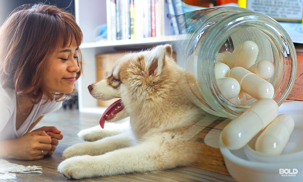 female dog owner playing with her pet whose life could be extended by rapamycin for dogs