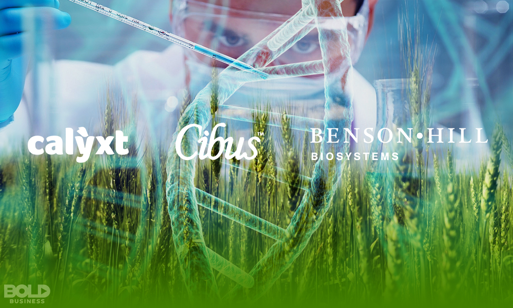 Gene Editing in Agriculture - Company Names