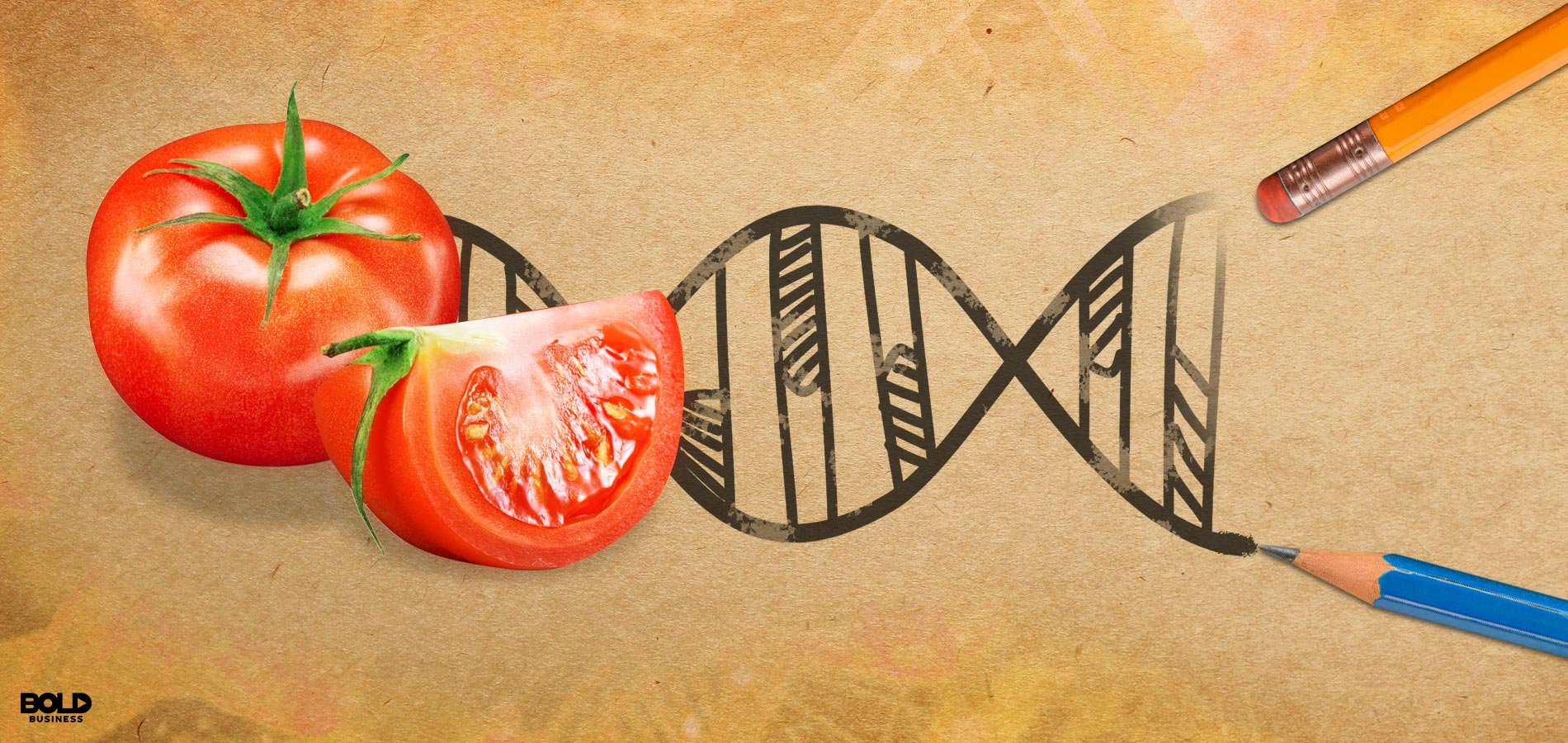 gene editing in agriculture with tomato