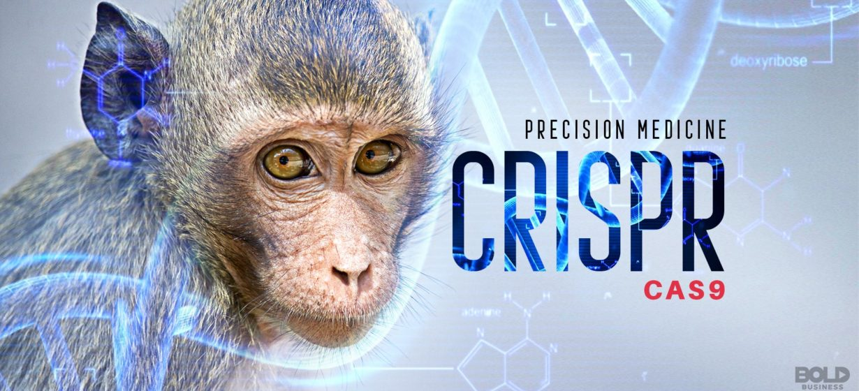 Precision Medicine Monkeys are Paving the Way for CRISPR