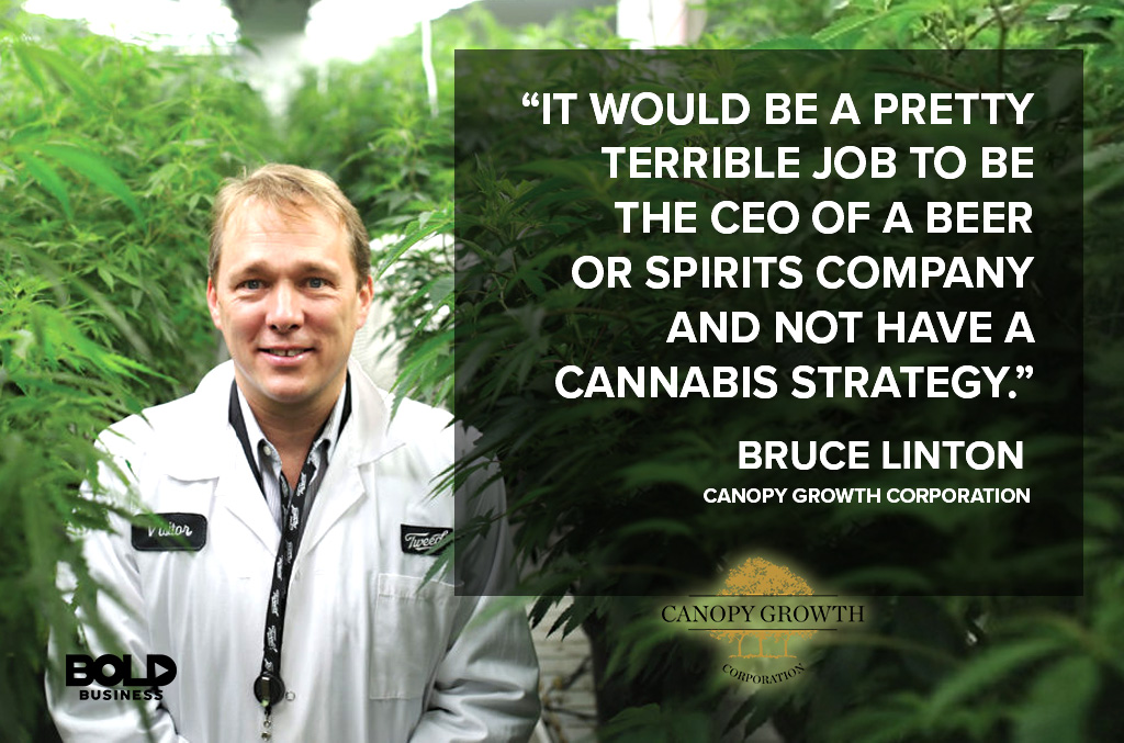 Bruce Linton CEO Canopy Growth Corporation Discusses impact of cannabis companies on Beverage Companies