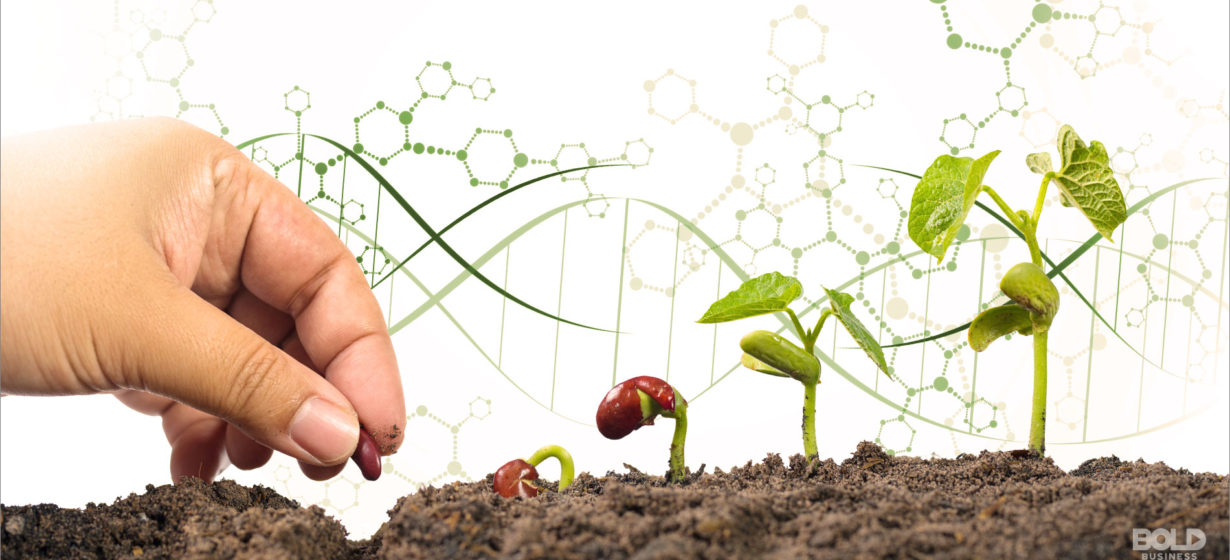 CRISPR Technology in Agriculture