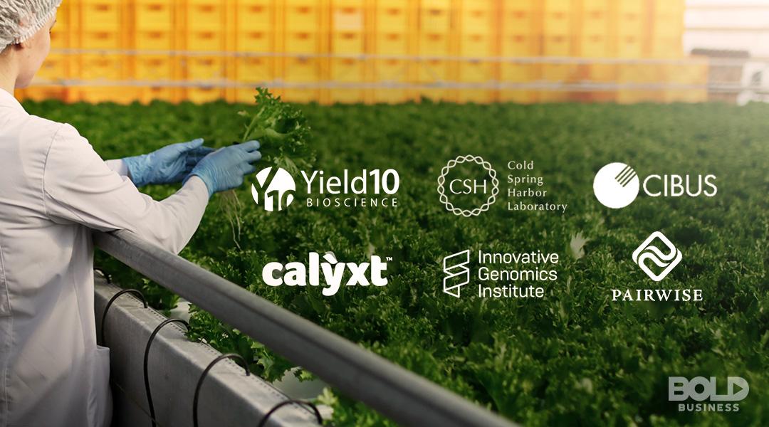 CRISPR technologies in agriculture, companies logos