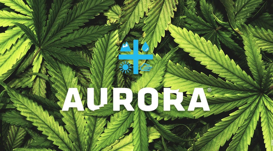aurora-cannabis-feature