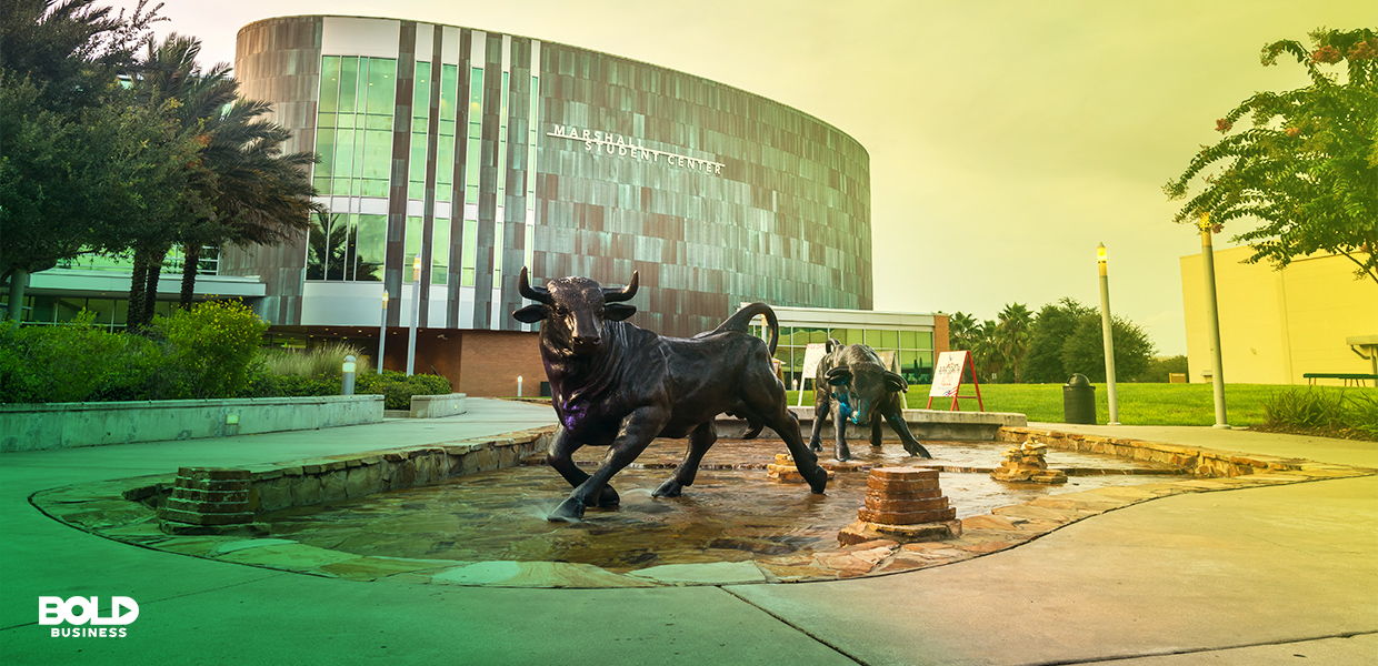 USF is a top Florida school thanks to its preeminent status.