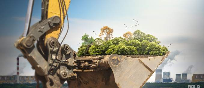 a construction crane hauling trees