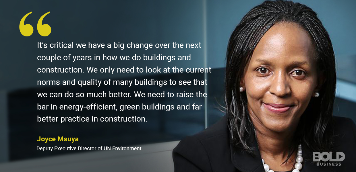 environmental impact of construction - Joyce Msuya quoted