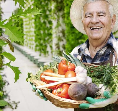 a photo of a farmer holding a basketful of fresh vegetables while standing in a hall of plants grown with the aeroponics growing system