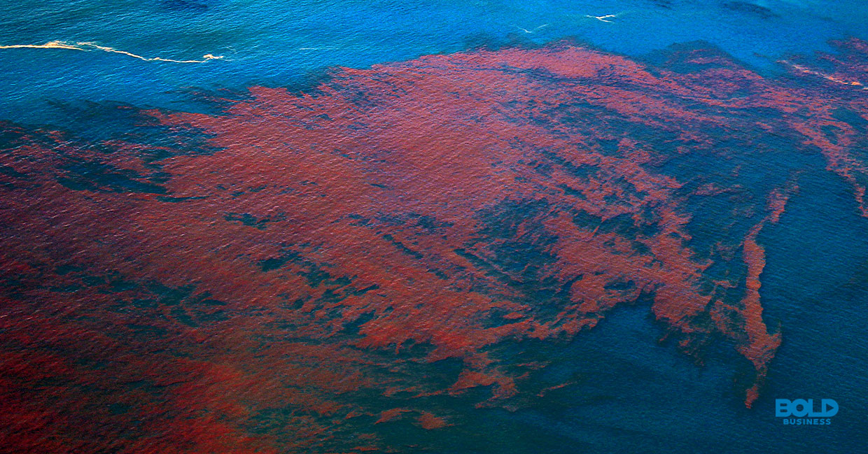 a photo of an aerial view of what a red tide looks like amid understanding the reality of pollution in oceans and seas, as well as ocean benefits to humans