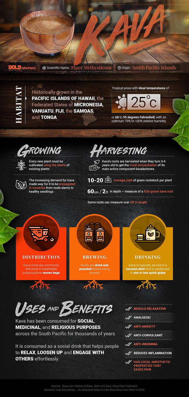 Kava Infografic