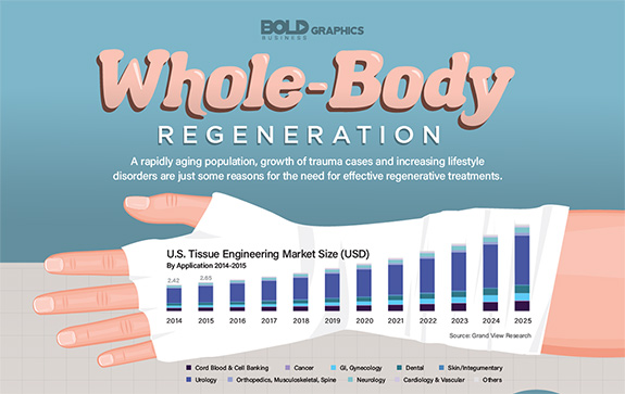 infographic thumbnail image of Whole-Body Regneration