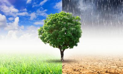 climate change featured image